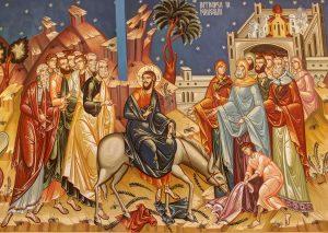Florii, intrarea în Ierusalim, asin, finic, salcie